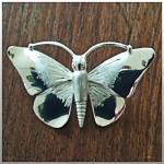 krista_lust__foto_vlinder