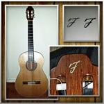 krista_lust__foto_gal-gitaar