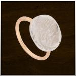 Sieraad nr. 407 SR Ring met Zilver en Rose gouden band €325,-